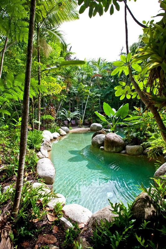 Australien Silky Oaks Lodge  #Praktika | Projekte | #Freiwilligenabeit in Australien unter www.academical-travels.de