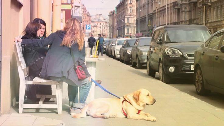Video for coffee lovers... | Coffeestation | Saint Petersburg