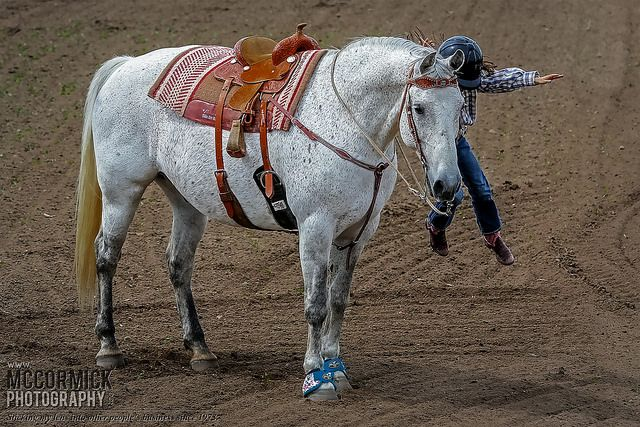 Gooseberry Lake : 4-H Rodeo 2014 : Supergirl | Flickr - Photo Sharing!