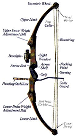 archery-equipment...for those who don't know the parts of a bow <3
