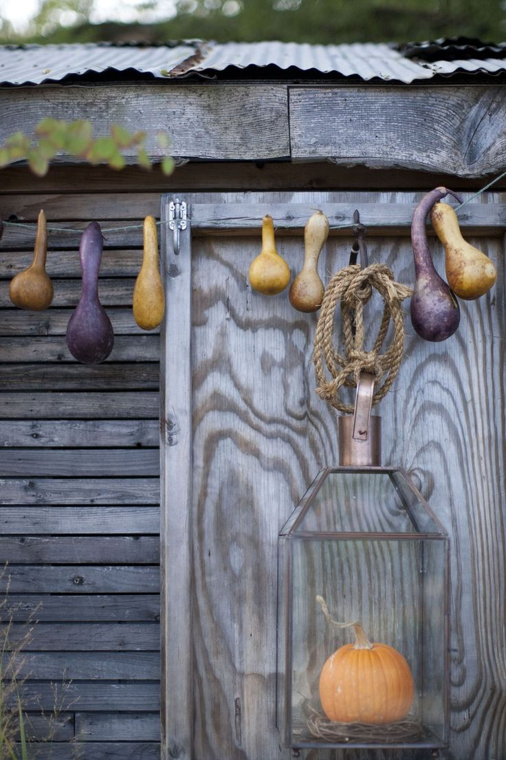 36 Stylish Primitive Home Decorating Ideas: 17 Best Images About Gourds On Pinterest