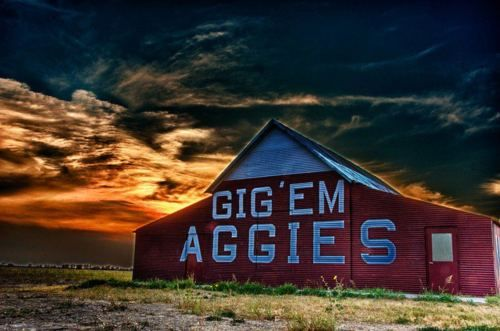 The Aggie Barn: just outside Reagan, Texas on Hwy 6. This is a must-see for die-hard Aggie fans. If you want to take a picture up-close, just be sure to send an e-mail ahead of time!  Whoop!