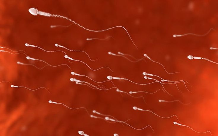 As a new study into the effects of lifestyle on sperm quality is published, we   round up five unusual ways to improve your sperm