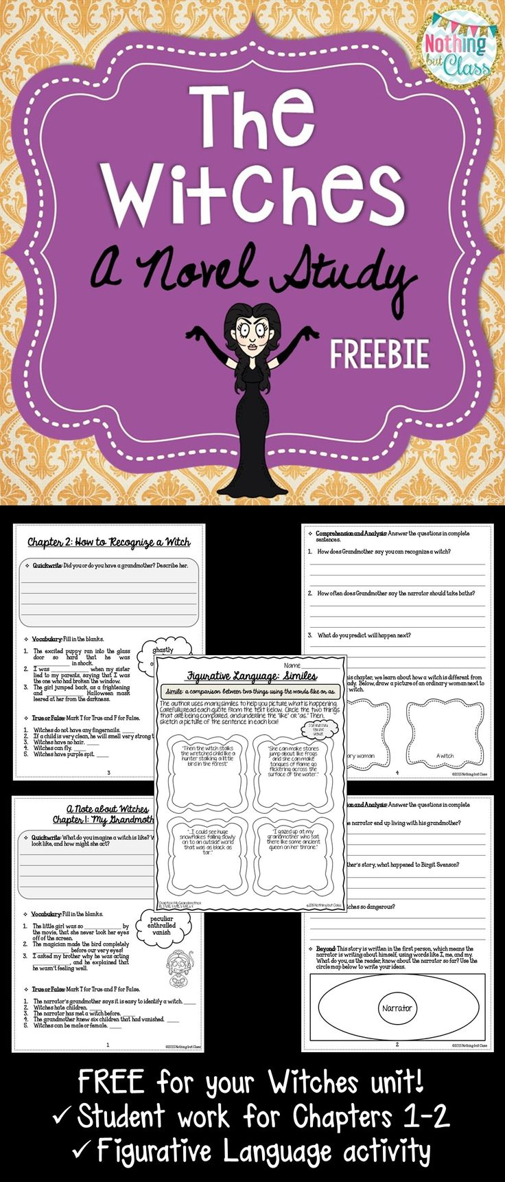 This is a 6 page FREE sample of my novel study for The Witches by Roald Dahl. It is Common Core-aligned and student-friendly. Open-ended questions are adaptable for all students!