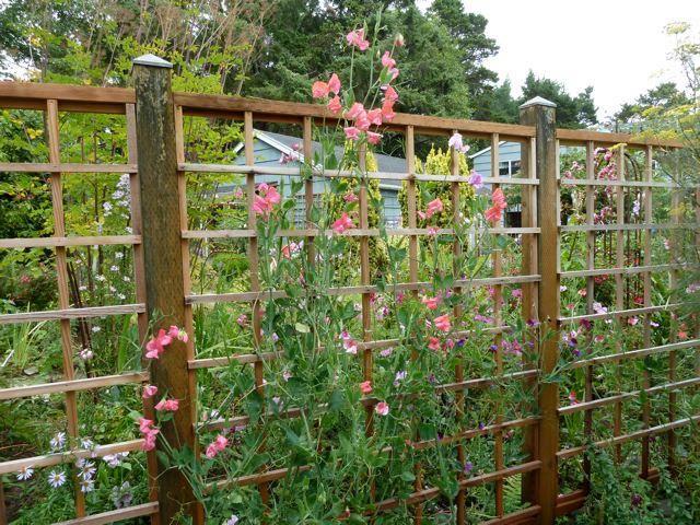60 best deer proof fences images on pinterest gardening for Attractive vegetable garden fence