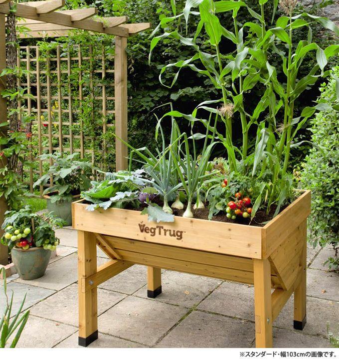 ホームベジトラグ L Acq加工 プランター菜園野菜コンテナ 野菜