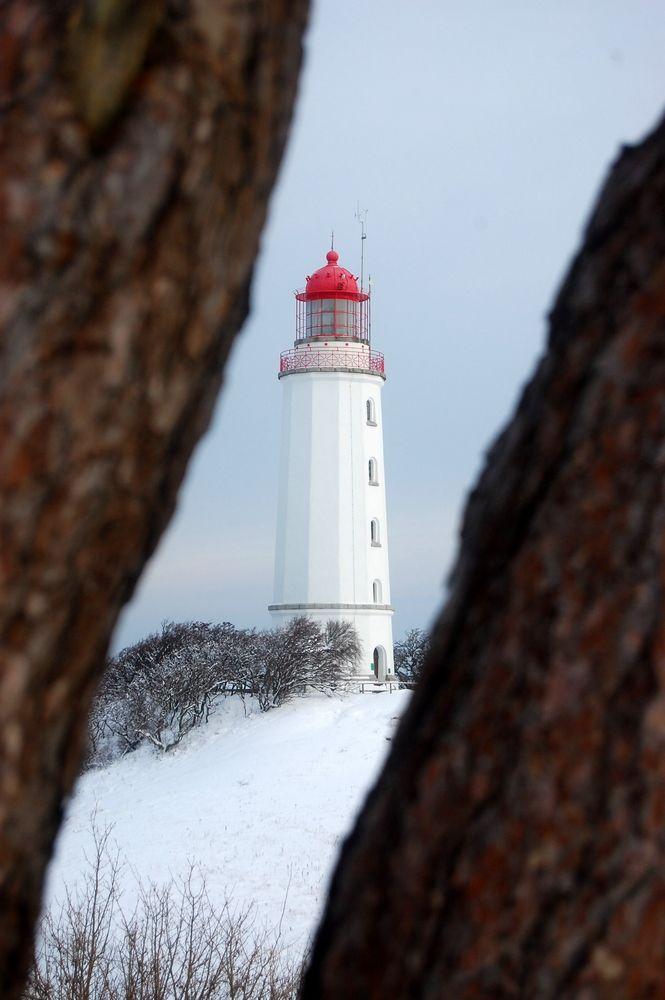épinglé par ❃❀CM❁✿Wer verstäckt sich denn da? Der Leuchtturm Hiddensee von Robert Ott
