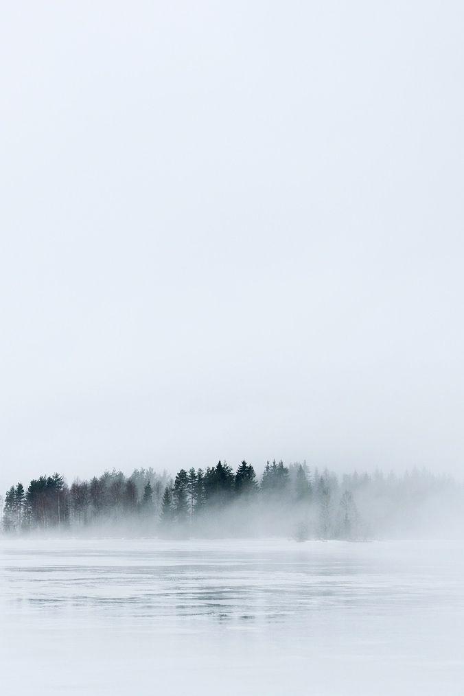 lake and trees
