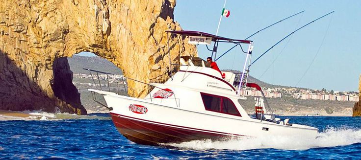 17 best fishing charters fishing guides images on for Cabo san lucas fishing season