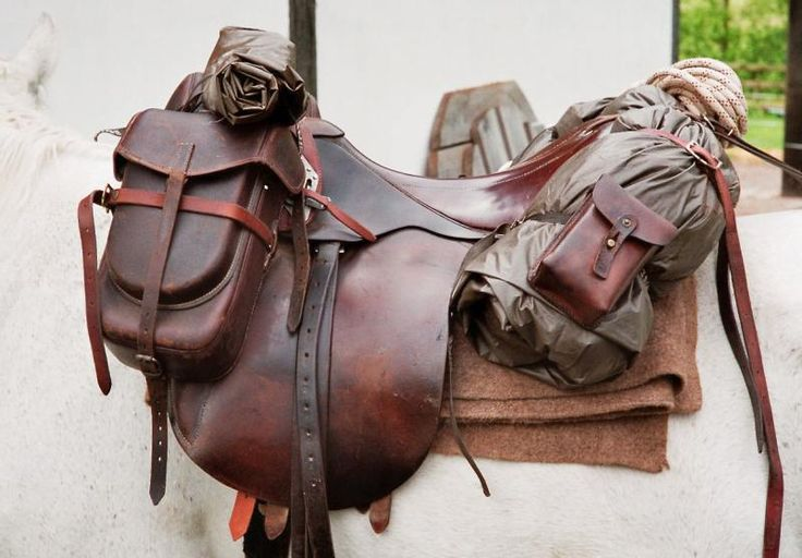 English trail saddle.  Different.  Kinda cool.