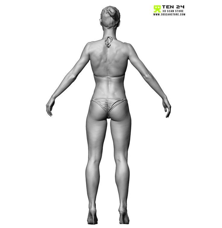 77 best 3D Ccan images on Pinterest   Anatomie, Anatomieverweis und ...