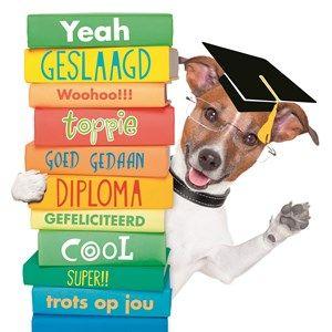 examen-yeah-geslaagd-woohoo-toppie-goed-gedaan-diploma