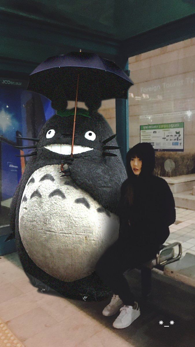 Taeng with totoro