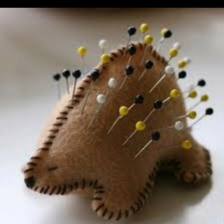 Adorable Porcupine pin cushion