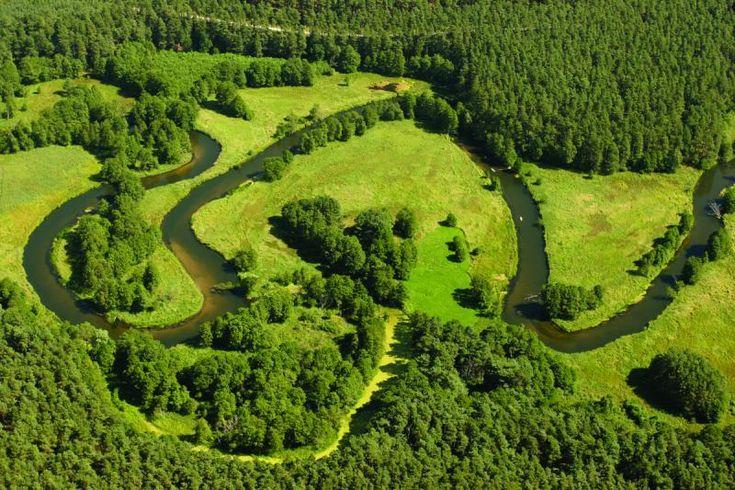 Rzeka Brda w Tucholskim parku krajobrazowym