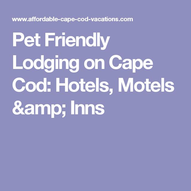 Beautiful Pet Friendly Hotels On Cape Cod Part - 7: Pet Friendly Lodging On Cape Cod: Hotels, Motels U0026 Inns | Cape Cod |  Pinterest | Hotel Motel, Cod And Motel