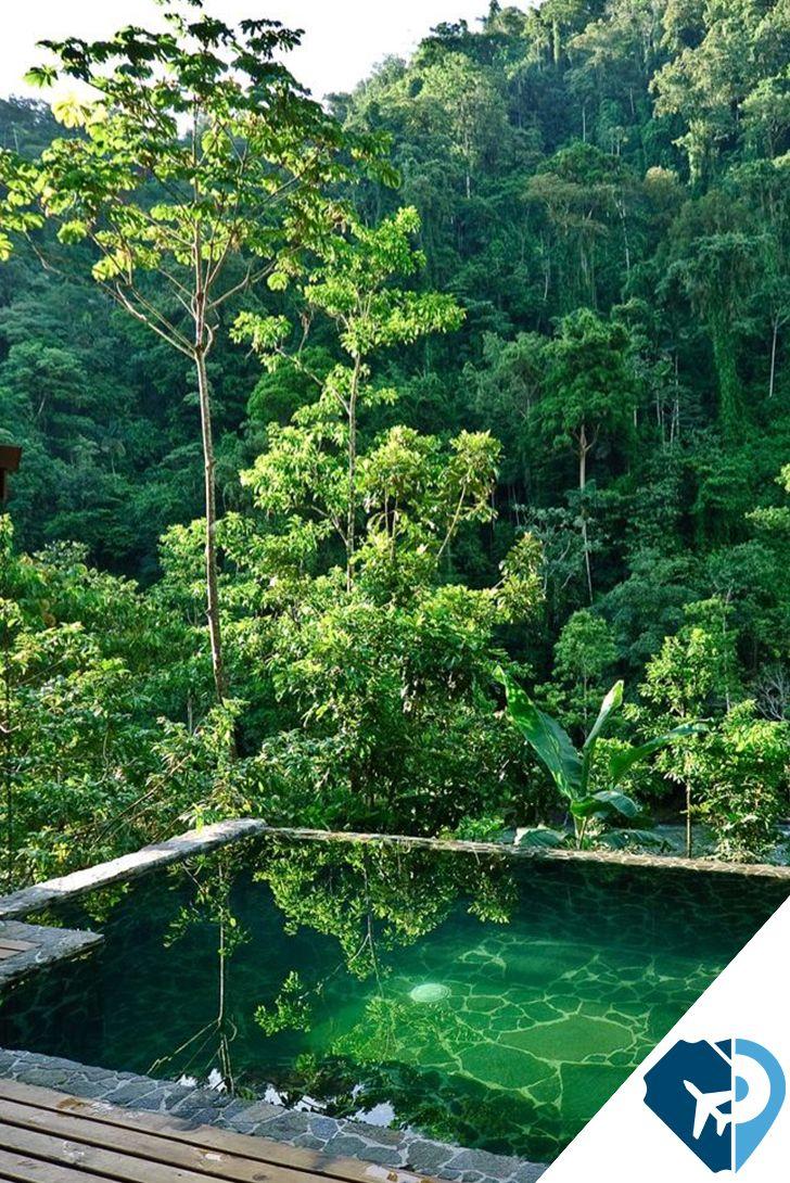 Pacuare Lodge en Costa Rica es realmente especial y único, es un lodge de jungla donde sus exquisitas cenas son realizadas a la luz de las velas y son acompañadas de una variada lista de vinos de nuestra cava, sus actividades de aventura son complementadas por nuestros tratamientos de spa, paquetes de luna de miel y suites con piscinas privadas. Es además un ejemplo de turismo ecológico que cuenta con un área protegida de 300 hectáreas de bosque lluvioso.