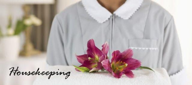WALDIA Securities Pvt. Ltd.: Housekeeping Manpower Services
