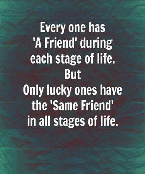 Love Quotes About Life: 215 Best Images About Quotes About Friendship On Pinterest