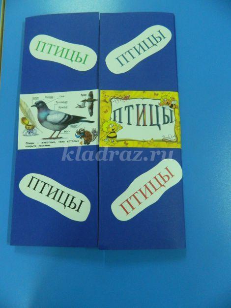 Лэпбук для детей средней - старшей группы. Птицы