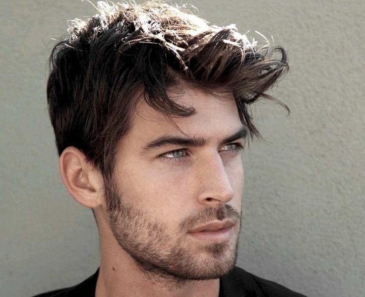 Pleasing 1000 Ideas About Short Beard Styles On Pinterest Short Beard Short Hairstyles Gunalazisus