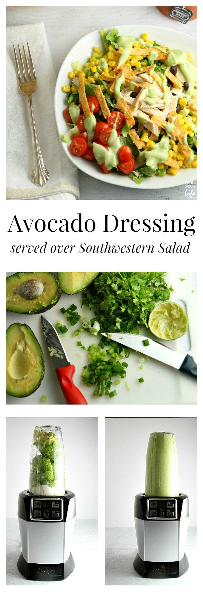 This Avocado Dressing is quite versatile...use it as a dip for vegetables, slather it on a sandwich or use it as a salad dressing! Shown with a Southwestern style salad, this is a great way to use up your leftover Thanksgiving turkey or a rotisserie chicken.