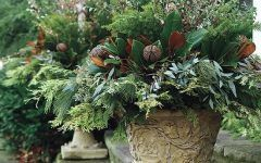 Winter Planters Greens Of Christmas Winter Garden Containers. #garden #winter | Winter Container