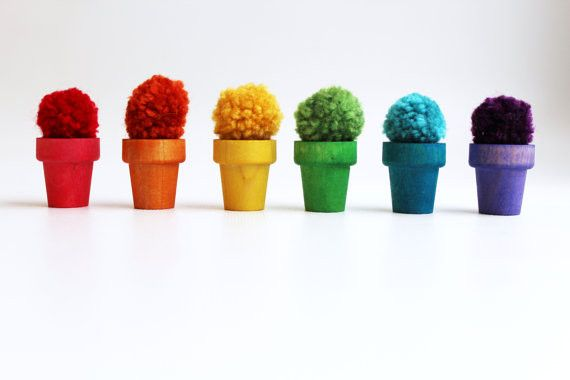 Imagine planting something as soft, squishy, and colorful as Rainbow Colored Pom Poms!