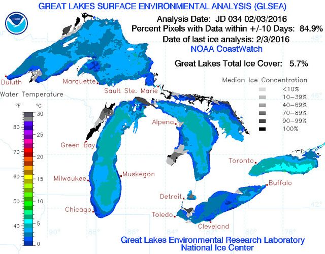 Ice coverage on the Great Lakes is near record low levels for this time of year, and this is causing concern for wildlife species that depend on winter weather to survive.