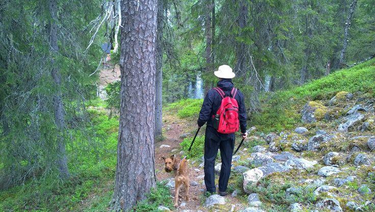 Hiking in Korouoma Canyon, 20km