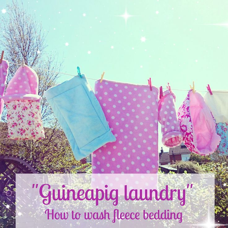 Isn't fleece guinea pig bedding so cute and colourful! It's safe to say that having your piggies on fleece is not only extremely stylish and oh so fancy but also beneficial for your guinea pigs hea...