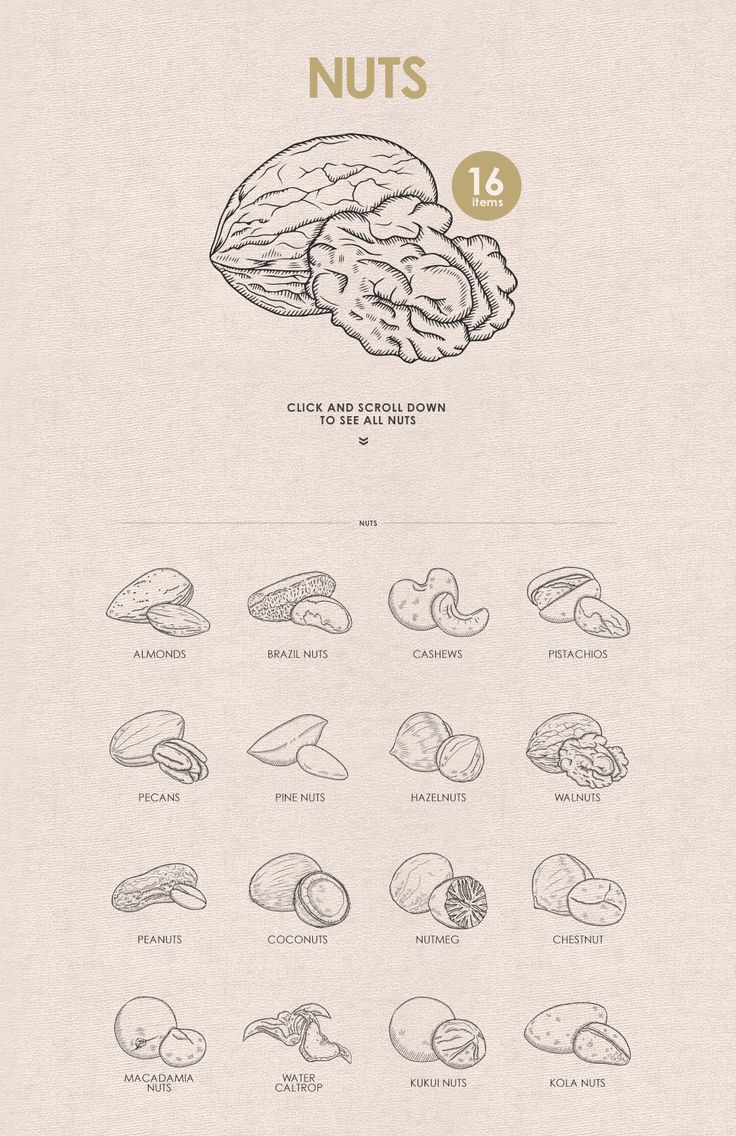 Herbs, Spices, Nuts. Hand drawn set. by Chelovector on @creativemarket