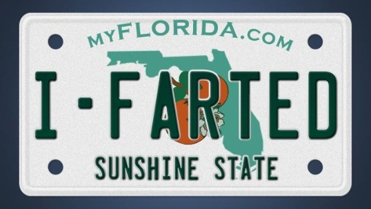 Unique 60 banned license plates in Florida Review - New florida handyman license Style