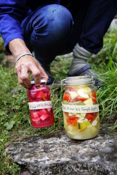 Köksträdgården: mjölksyrade grönsaker