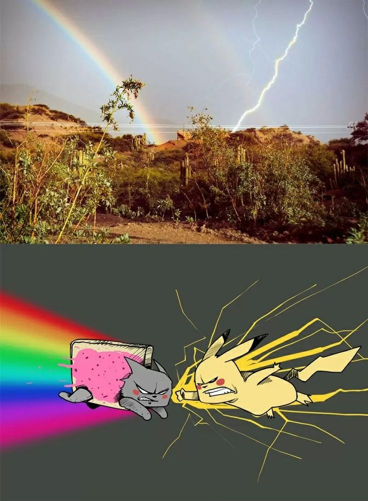 Pikachu versus Nyan Cat (rainbow and lightning picture)