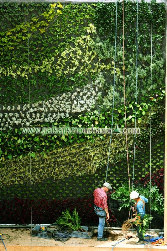 1000 images about jardin vertical centro comercial quito for Jardines verticales quito ecuador