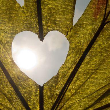 Nature Valentine's Day Card | @FairMail - Fair Trade Cards | Heart, Leaf, Sun