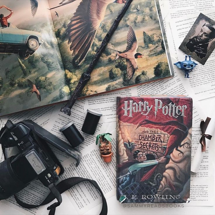 "5,452 Likes, 61 Comments - SAMMY (@sammyreadsbooks) on Instagram: ""This Harry Potter series re-read has been magical so far! I finished off Chamber of Secrets the…"""
