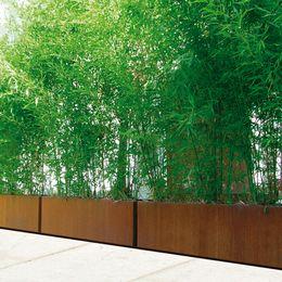Mobiliers urbains : Acier corten inox - Jardinières Bambu corten