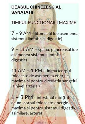 Ceasul chinezesc al sanatatii traseaza practic bio-ritmul organismului si ne arata cum energia circula prin corpul nostru, variind la fiecare doua ore si influentand diverse parti ale corpului.