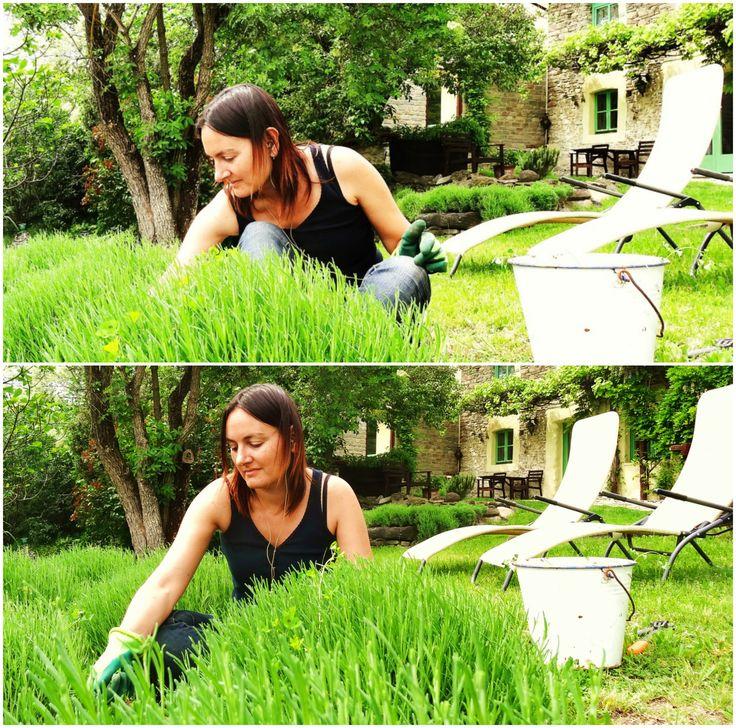Enjoying a day of slow gardening at Agriturismo Verdita #Piemonte #Italy