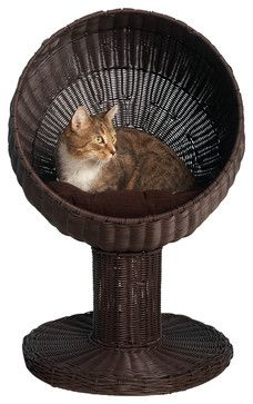 $200 Kitty Ball Bed in Espresso contemporary-pet-care