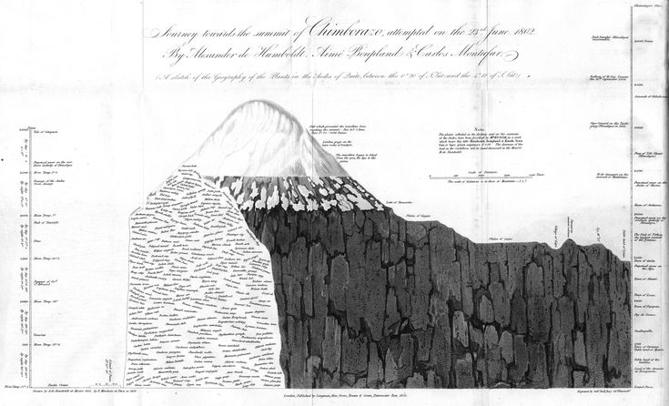 MOUNTAIN in Ecuador, Alexander von Humboldt, 1802. In this chart reveals how plant species varied by altitude