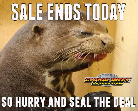 Sale Ends Today Dont Cry Seal The Deal Car Memes And