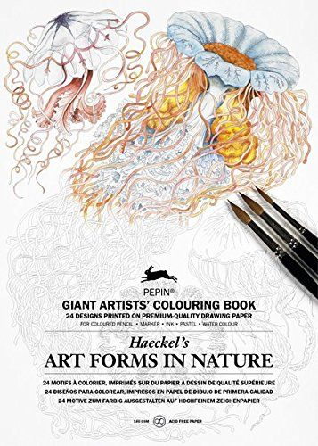 Art Forms Of Nature Haeckel Giant Artists Colouring