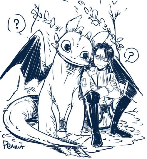 Toothless & Levi. I love this so much ~~ Attack on Titan - #AOT