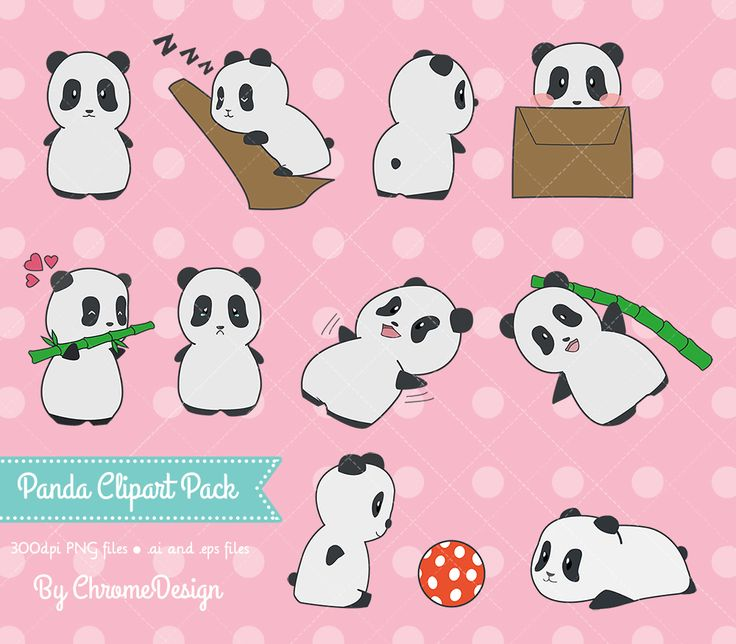 Cute Panda Clipart ~ Instant Download!