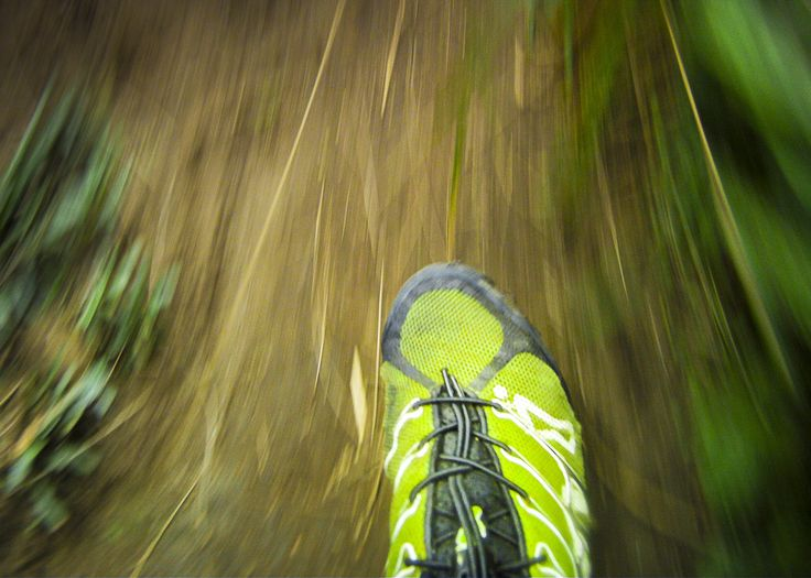 Inov-8 shoes, perfect for the Waitakere Ranges trails, Waitakere, Auckland, New Zealand