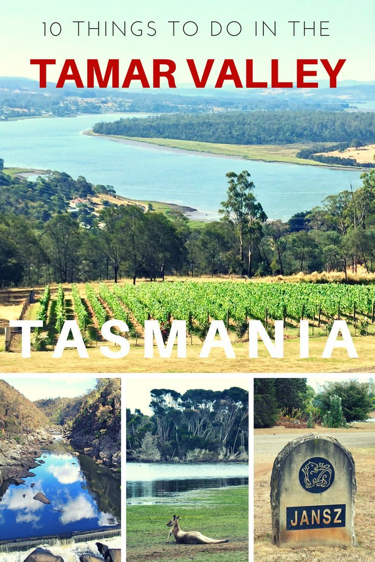The Tamar Valley stretches sixty kilometres north from the Tasmanian city of Launceston, up to the Bass Strait. It's Tasmania's oldest wine growing region and is renowned as one of the best in Australia. Make sure to check it out on your next trip to Tasmania.