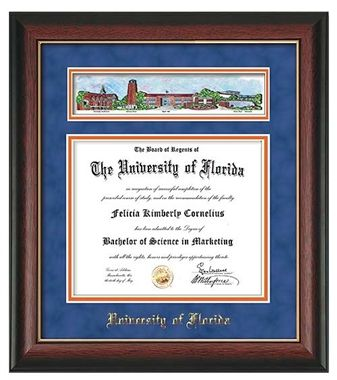 8 best images about University of Florida Diploma Frames on ...